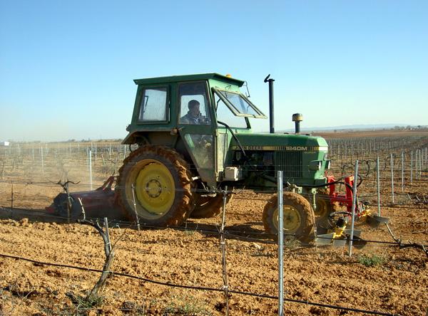 maquinaria-agricola-alineadoras-para-sarmientos-11