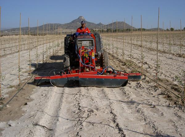 maquinaria-agricola-alineadoras-para-sarmientos-12