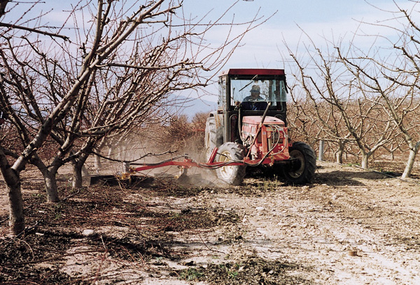 maquinaria-agricola-alineadoras-restos-de-poda-13