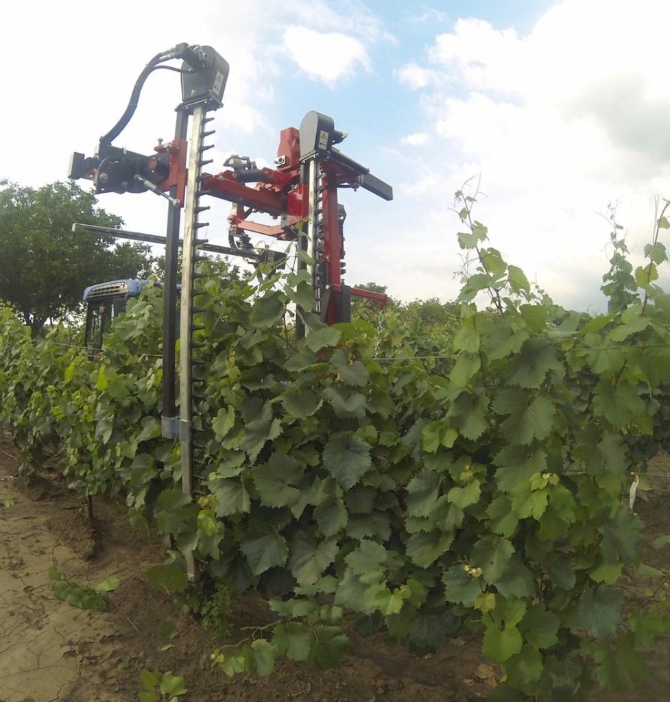 maquinaria-agricola-despuntadoras-para-viña-13