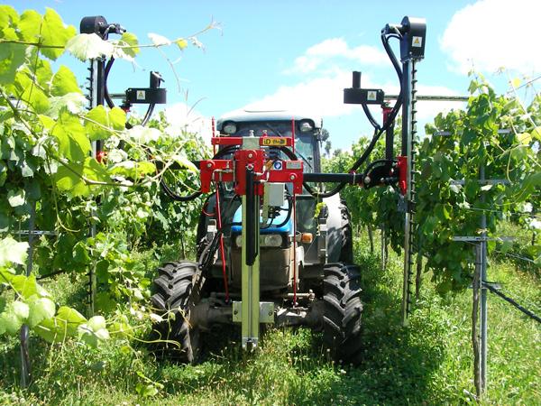 maquinaria-agricola-despuntadoras-para-viña-19