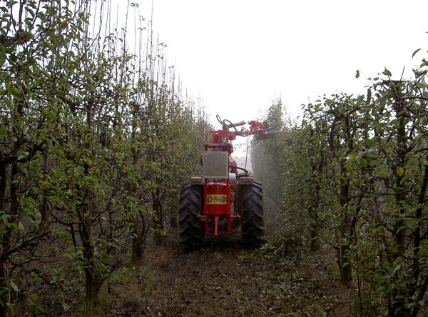 maquinaria-agricola-prepodadora-arboles-11