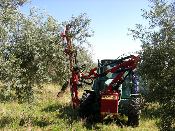 maquinaria-agricola-prepodadora-arboles-14