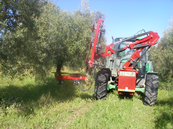 maquinaria-agricola-prepodadora-arboles-15