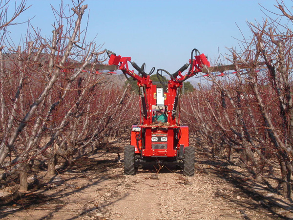 maquinaria-agricola-prepodadora-arboles-20