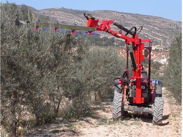maquinaria-agricola-prepodadora-arboles-22