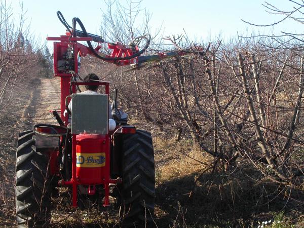maquinaria-agricola-prepodadora-arboles-23