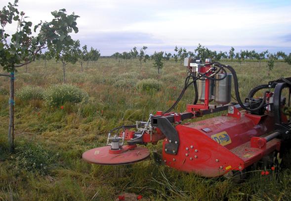 maquinaria-agricola-trituradora-desbrozadora-reforzada-17
