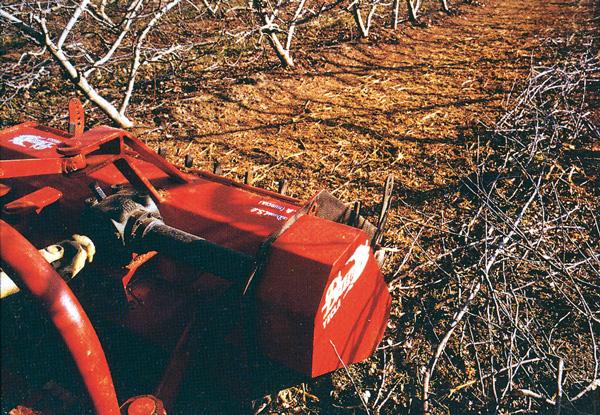 maquinaria-agricola-trituradora-desbrozadora-reforzada-18