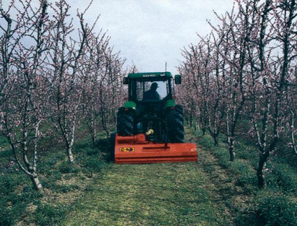 maquinaria-agricola-trituradora-desbrozadora-reforzada-19