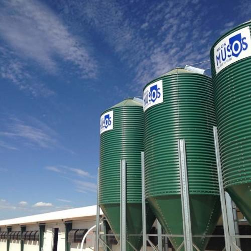 Equipamiento de Granja Avícola en Quintanar del Rey - Cuenca