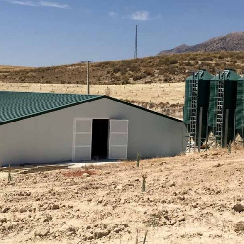Nave Avícola, Granja para pollos de engorde en Vélez Rubio