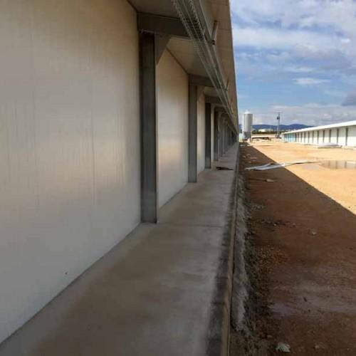 Instalación Avícola de 4 naves para engorde de pollos en Utiel