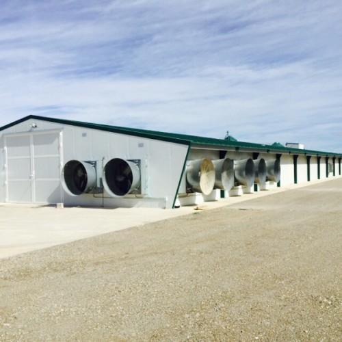 Granja avícola de pollos de engorde en DOLAR, GRANADA