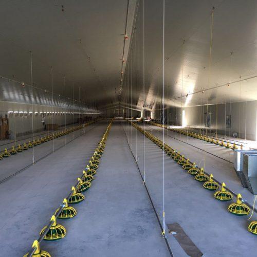 Dos naves para pollos de 120x16m en La Pueblanueva (Toledo)