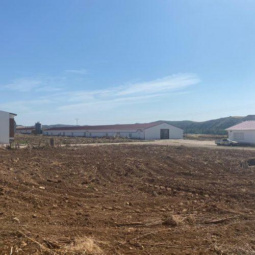 Reforma para Explotaciones Avícolas Redondo