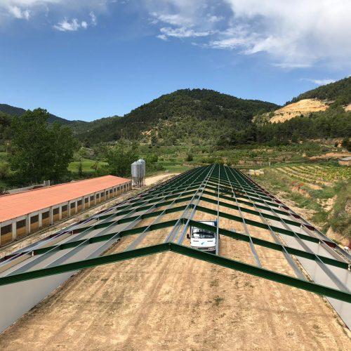 Nave de pollos en Rafalés (Teruel)