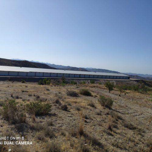 Nave de pollos en Zurgena (Almería)