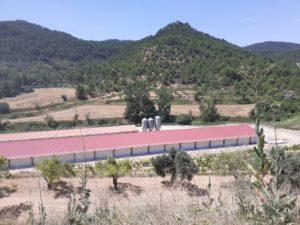Construcción granja de pollos en Ráfales (Teruel)