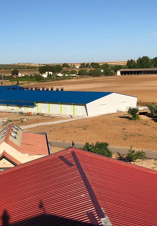 Construcción granja avícola para Nutreco