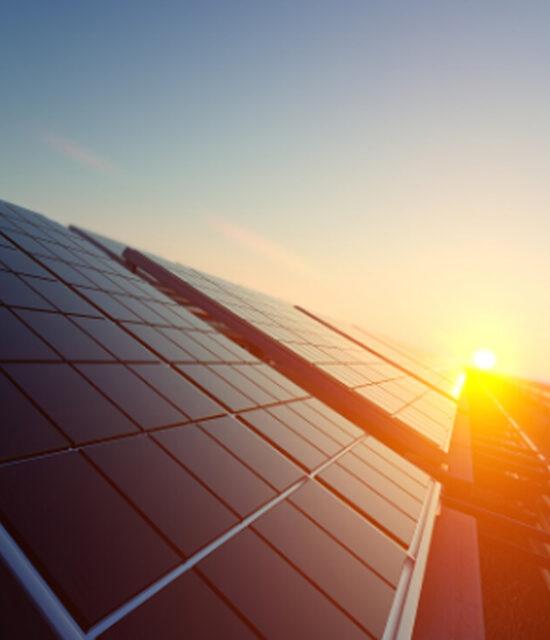 Placas solares en construcción de granja avícola